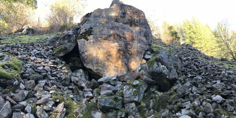 Shark tank boulder