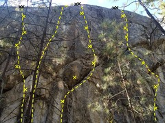 Pitbull Wall routes L to R <br />Cuss n' Fight 11b <br />Stray Dogs- trad 10b <br />Hangin' Tree 11d <br />Loud Pipes 11a