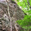Sassafras on a humid summer day. Awesome route with a  variety of cool moves!