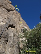 Rock Climbing Photo: Two For One [Anchor reference] The 1 bolt on the ...