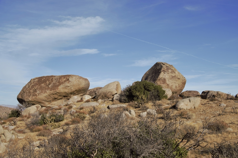 The big boulders with Priapism.