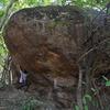 Jewel Beetle boulder