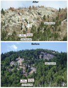 Before and after the Oct 2017 Fire, with two routes on Lower Patina Wall Indicated.