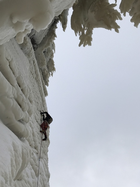 Will Mayo leading the spectacular final pitch of Dreamline.