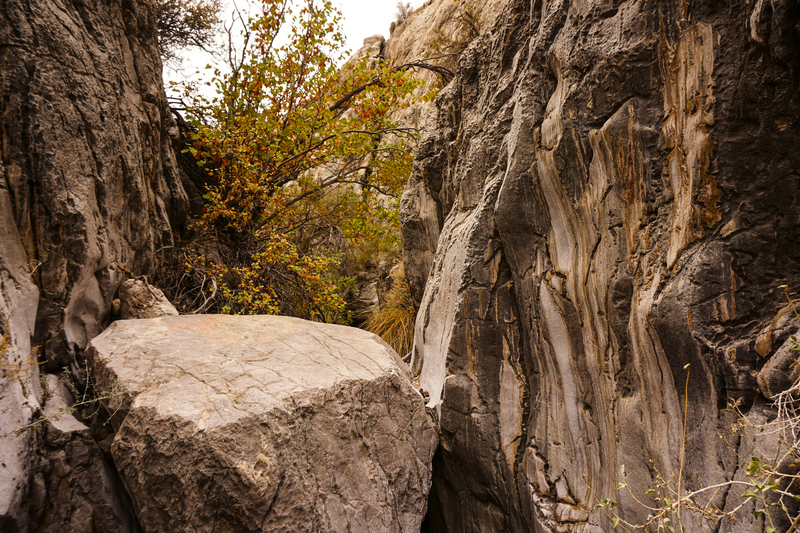 Some of the beautiful limestone in Box Canyon.