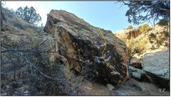 Rock Climbing Photo: Mesa County Cult.