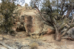 Rock Climbing Photo: Plesiosaur Stone.