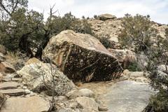 Rock Climbing Photo: The Gruffalo Boulder.