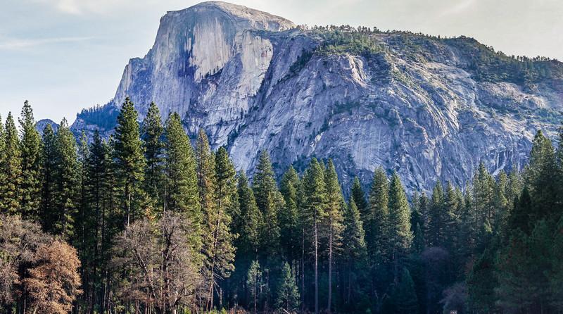 Half Dome towering above the Valley.<br> <br> by Dalton Johnson www.daltonjohnsonmedia.com