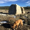 The boulder and a dog