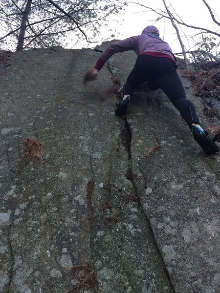 It could indeed be bouldered.  So much leafy debris though....