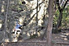 "Rock Climbing Photo: ""Shady Rock Traverse"""