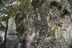 Rock Climbing Photo: First Ascent of 'Coconut Mike'