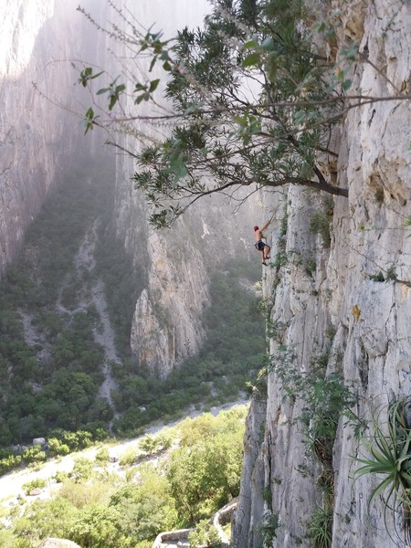 Unknown Climber On Wonder Wall