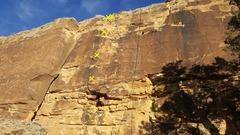 Rock Climbing Photo: Unknown 10b.