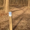Follow the trail markers to the four mile marker then look south, on your right