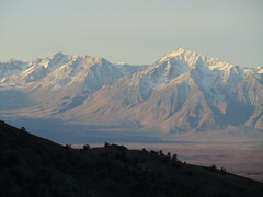 Rock Climbing Photo: view across the Great Owens Valley from White Moun...