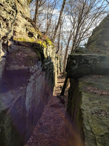 Approaching the main wall.  JBN on the left at the bottom under the maple tree