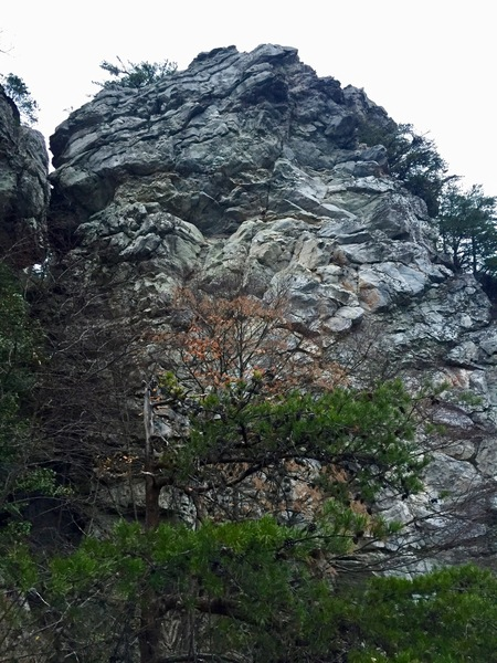 The upper half of the Devil's Chimney Wall.