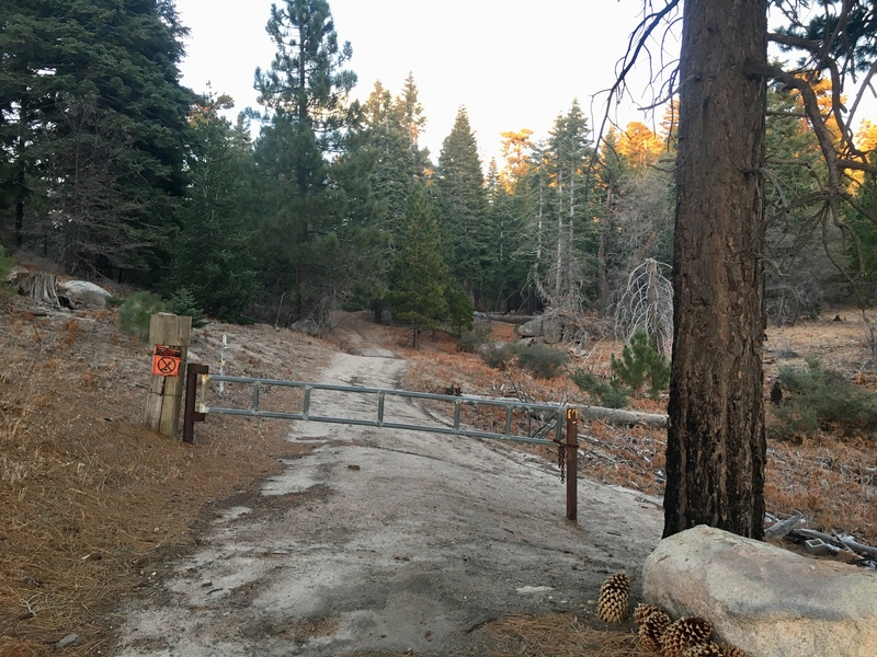 The gate before the trail to Mill Peak.