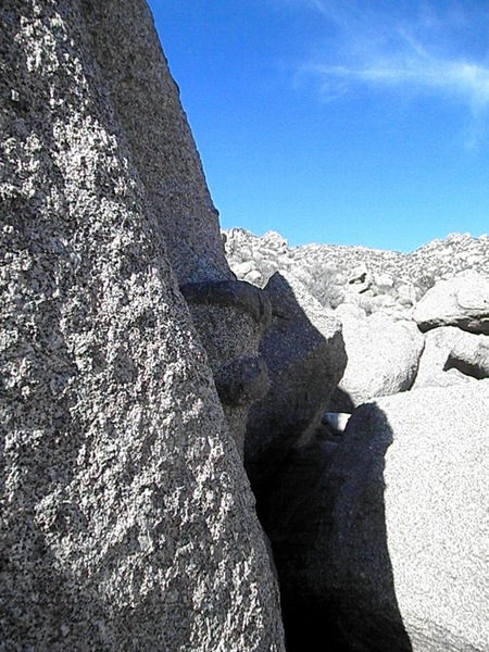 Meanderer middle section (hop from the ledge to the top of the large black knob)
