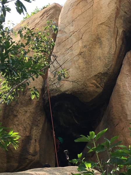 From the position where the climber is, if take the roof it's Devil's snare and if you keep chimneying up in the opposite direction, it is Paathala