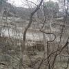 Wrath Wall as seen through the trees.