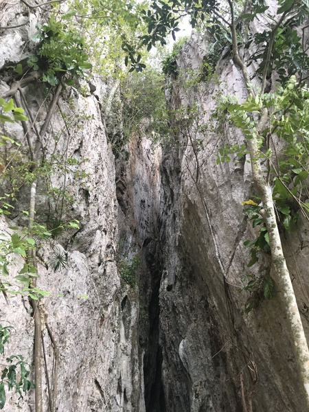 Entrance to Cueva Larga