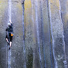 Rawhide<br> <br> Photo by Dalton Johnson<br> @seek_shangri_la<br> www.daltonjohnsonmedia.com