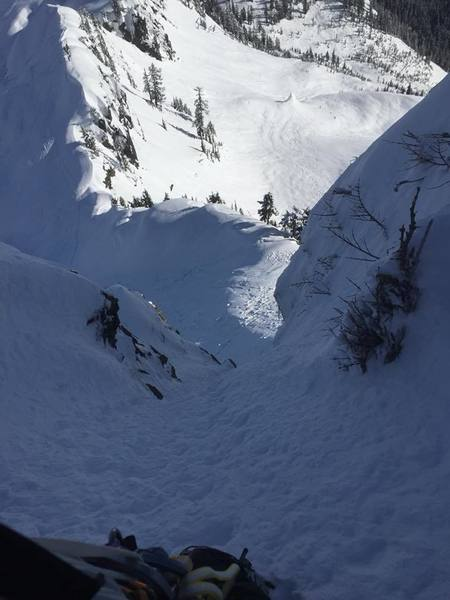 Top of pitch 1 at the tree anchor.