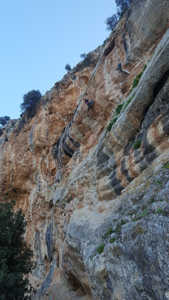 Enjoying some overhanging routes at despo. This route turned out to be my first 7b.