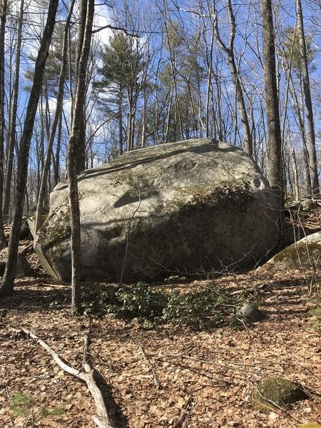 Treehouse boulder