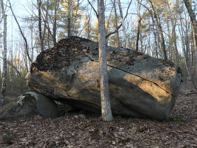 Other side of Warped boulder. Ef That Tree.