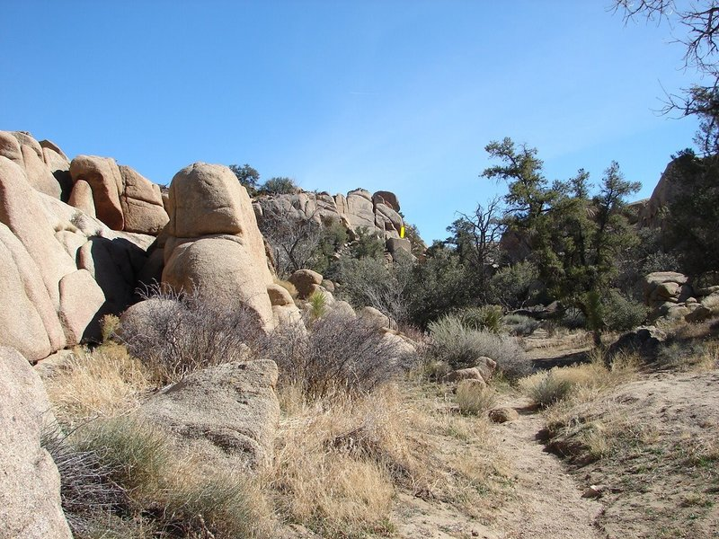 Standing next to Gateway Boulder looking at the Brotherhood Boulder. A good way to get there.