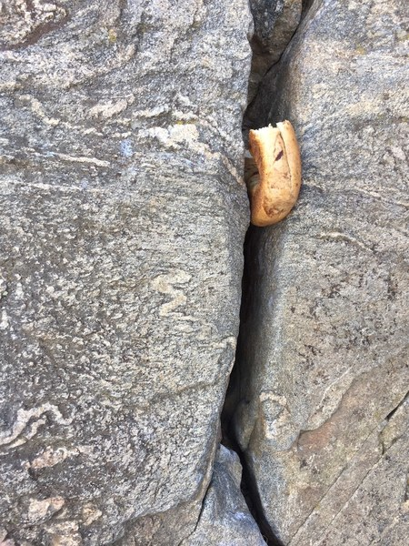 Start the climb all the way to the right at this bagel-sized crack.