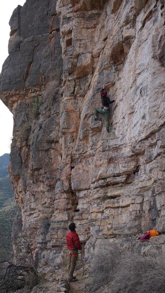 Tiff climbs Ziggy.