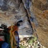 Dihedral on 2nd/3rd pitch of dappled mare