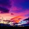 Desert sunsets for days!