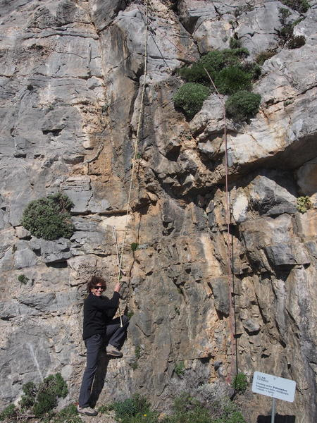 SM explors the fixed lines leading to the bases of Psilovrachos climbs
