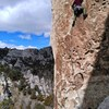 The route is very sustained at the grade on small crimps down low and friction moves up top