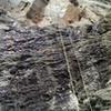 Rope hanging off of Goldbug