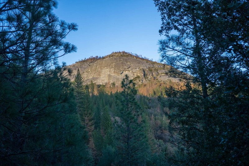 Wawona Dome from the logging road