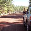 Traffic jam Northern Arizona style.