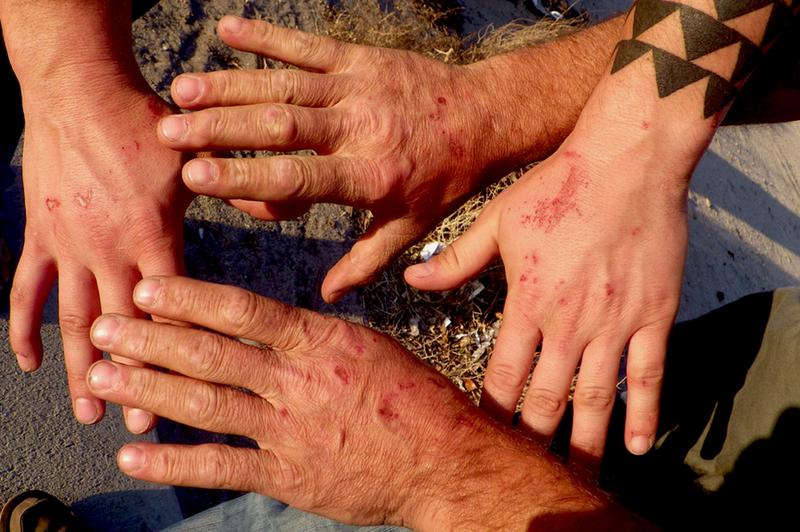 Crack climbing hands, Indian Creek