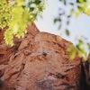 Interesting way to climb the crux. Photo by: Tori Mercedes