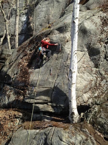 tech tip. climb a tree to avoid the butt shot ;)
