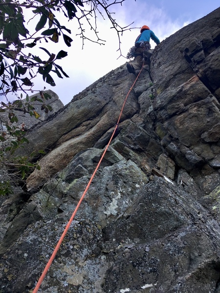 The start of Crackback, a decent route in need of some gardening care or more traffic. Photo by JH.