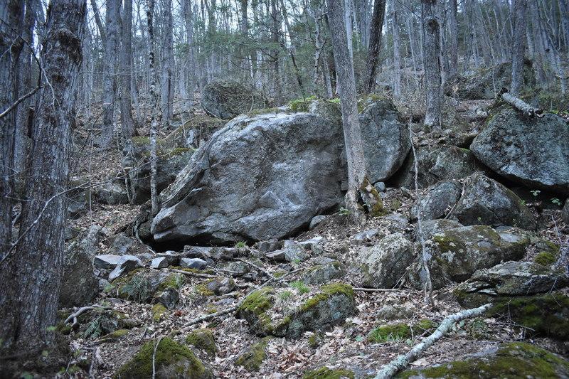 The Schistomatics Boulder