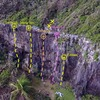 Drone view looking at the north-facing wall at Puerto Playa Hermina in Quebradillas. Climbers on Hump Day and starting Free Bird.