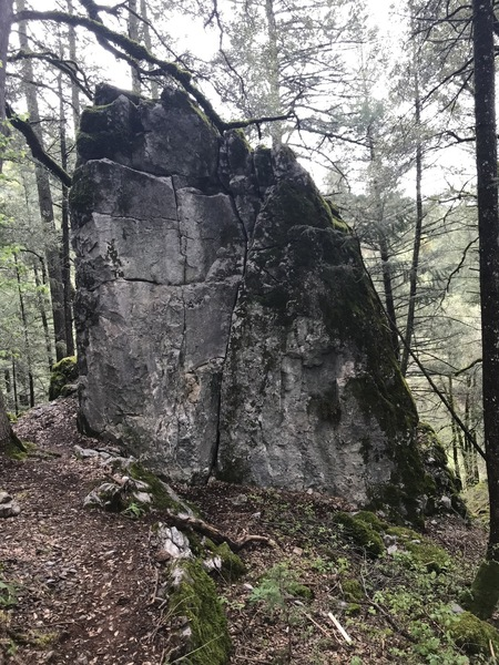 Warm up boulders beside the trail